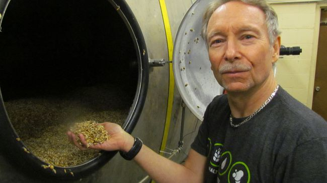 Greg Reny holds a handful of barley at Against the Grain Malt, a micro malting company that has started up on Vanier Street in Sarnia to supply malt for craft and home brewers.