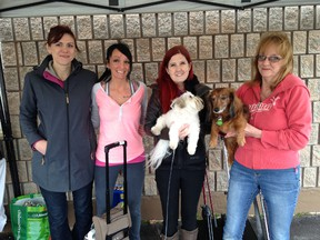Julie Rice, second from right, is surrounded by friends, from left, Mari Wall, Lisa Holland and Mary Ann Holland at a fundraiser held at K9 Klips on Sunday. Friends of Rice are helping her fundraise money to stay in Toronto, as Rice is scheduled to receive a double lung transplant.