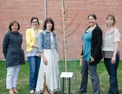 L-R: Rhonda Oczkowski, Courtany Epp, Susan Gerber, Ria Frith, Magan Braun and Town Coun. Lorne Jackson celebrated the generous donation of a Dropmore Linden tree on behalf of the Pincher Creek Wellness Committee last Tuesday. The donation was made as part of an initiative to provide more shade to reduce the risk of skin cancer. | Caitlin Clow photo/Pincher Creek Echo