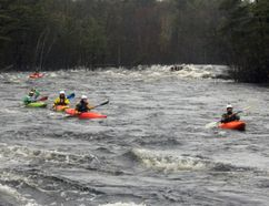 A string of kayakers makes their way down the Petawawa River during Saturday's Hell or High Water event. Rainy conditions and record high levels and flows didn't deter participants from hitting the whitewater
