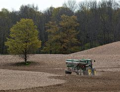 A farmer works a field east of St. George. Brant, Norfolk and Haldimand counties each had fewer farmers in 2016 compared to the last census in 2011, but the average size of farms is up. (Brian Thompson/The Expositor)