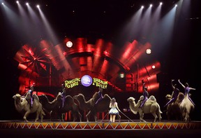 """In this May 4, 2017 file photo, a performance by the Ringling Bros. and Barnum & Bailey Circus features the Desert Goddesses camels, in Providence, R.I. The circus that has wowed crowds for 146 years with its """"Greatest Show on Earth"""" will be taking its final bow on Sunday May 21, 2017, when the sold-out 7pm show finishes at the Nassau County Coliseum in Uniondale, New York. (AP Photo/Julie Jacobson, File)"""