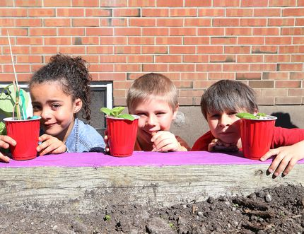 Aniyah Byard, 6, left, David Jeanveau, 7, and Marshall Paul, 6, take part in the Louis Street Association annual community gardening in Sudbury, Ont. on Saturday June 3, 2017. The gardening event was made possible thanks to the Healthy Kids Community Challenge, which is a partnership between the Sudbury and District Health Unit, City of Greater Sudbury and Foodshed. John Lappa/Sudbury Star/Postmedia Network