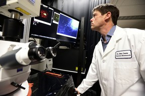 Researcher Dr. John Lewis looks at some cancer samples on Tuesday Jan. 20, 2015. Perry Mah/Edmonton Sun/QMI Agency