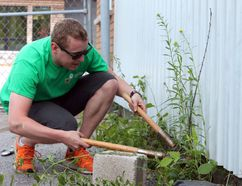 Brandon Lowi, left, works away at removing overgrown weeds from along the side of the Partners in Mission Food Bank while employees of The Home Depot, right, volunteer to help out with various tasks, such as staining a deck at the Elizabeth Fry Society, as part of the United Way's Day of Caring on Friday. (Amanda Norris/The Whig-Standard)