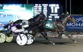 Fear The Dragon won the North America Cup in exciting fashion last night. Driven by David Miller, the horse made a late charge. Clive Cohen Photo