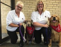 Myra Pettit, left, and her silver lab Sky and Ruth Burridge and Ginger are two of St. Thomas-Elgin St. John Ambulance's four participants in its new canine therapy program. (Jennifer Bieman/Times-Journal)