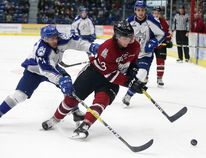 Sudbury Wolves David Levin battles for the puck with Kyle Rhodes of the Guelph Storm during OHL action in Sudbury, Ont. on Friday, December 30, 2016. Gino Donato/Sudbury Star/Postmedia Network