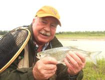 Neil with a mooneye from the Red Deer River tailwater below the Dickson Dam
