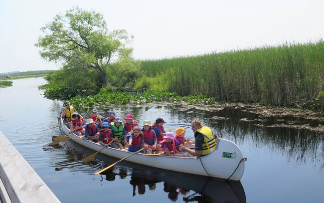 There's much more to see at Ontario's lakeside parks than the beach. Travel writer Bob Boughner notes that our provincial and national parks in Ontario also offer a wonderful opportunity to get close to some unique environmental zones. Here, a group observes some of the nature at Point Pelee National Park. (Handout)
