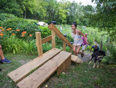 Kiyomi Kagawa and her dog Zero, walk up the staircase  built by resident Adi Astl coming from Tom Riley Park, near Islington Ave. and Bloor St. W. in Toronto, Ont. on Tuesday July 18, 2017. Astl built the staircase for $550, the city said it would cost them between $65,000 to $150,000 to build. Ernest Doroszuk/Toronto Sun/Postmedia Network