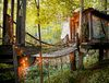 Airbnb treehouse