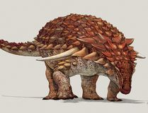An illustration of the new species of armoured dinosaur, named Borealopelta markmitchellii. Supplied / Government of Alberta