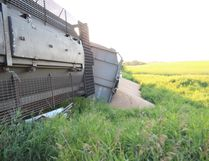 Grain cars have spilled their cargo after derailing east of Melfort on August 10.