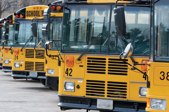 Photo by Metro Creative Connections - 