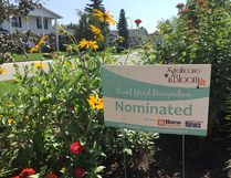 This year's Front Yard Competition will see Strathcona in Bloom recognize local nominated homeowners at a ceremony on Aug. 17. Photo Supplied