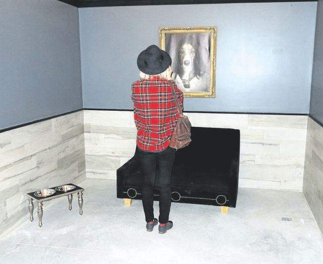 A visitor to Dog Tales takes a photo of original doggie art work in a stylish kennel. (Jim Fox/Special to Postmedia News)