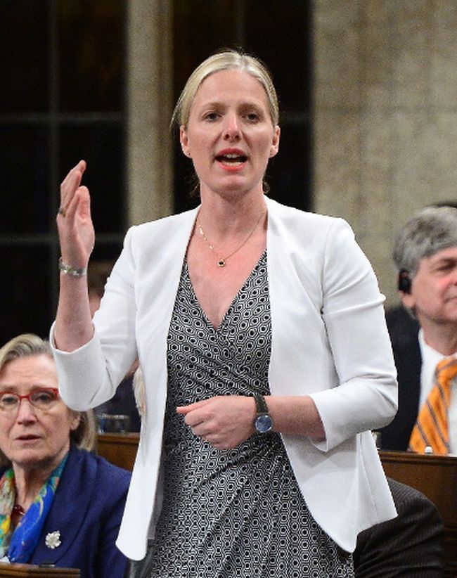 Environment Minister Catherine McKenna (The Canadian Press)