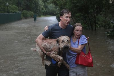 Andrew White (L) helps a neighbour down a street after rescuing her from her home in his boat in the upscale River Oaks neighboruhood after it was inundated with flooding from Hurricane Harvey on Aug. 27, 2017 in Houston, Texas. (Scott Olson/Getty Images)