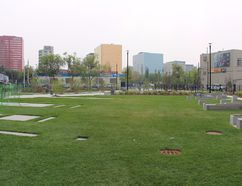 Alex Decoteau Park, at the corner of 102 Avenue and 105 Street, opened to the public on Saturday. A grand opening ceremony will be held this Saturday at the park. Madeleine Cummings, Edmonton Examiner