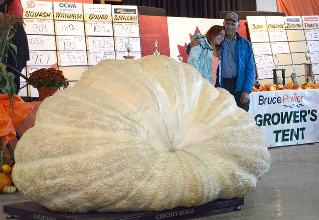Father-daughter duo Jim and Kelsey Bryson of Ormstown, Que., react after their pumpkin won the international weigh-off at Pumpkinfest on Saturday. Their giant weighed in at 1,760 pounds. (Rob Gowan The Sun Times)