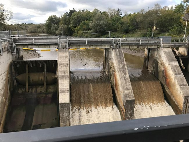 A power outage is suspected to have triggered the middle two gates to open at the Thornbury Dam late Friday, draining the pond above the dam and stranding at least 60 fish in the fish ladder. (John Kendell photo)
