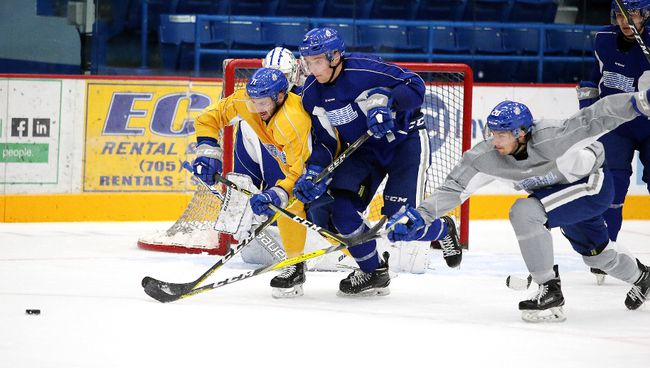 Members of the Sudbury Wolves run through drills during team practice in Sudbury, Ont. on Tuesday, October 3, 2017. The Sudbury Wolves will hit the road this weekend as they make stops in both St. Catharines and Mississauga. Gino Donato/Sudbury Star/Postmedia Network