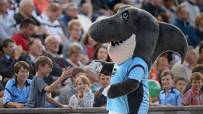 "A shark mascot for a British cricket team is seen in a 2013 file photo. A man wearing a shark suit, to advertise the McShark computer store chain, was fined for violating Austria's ""burqa ban"" on Monday, Oct. 9, 2017.   (Mike Hewitt/Getty Images)"