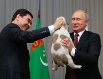 Turkmenistan's President Gurbanguly Berdymukhamedov, left, presents a puppy to Russian President Vladimir Putin during their meeting in the Bocharov Ruchei residence in the Black Sea resort of Sochi, Russia, Wednesday, Oct. 11, 2017. (Maxim Shemetov, Pool Photo via AP)