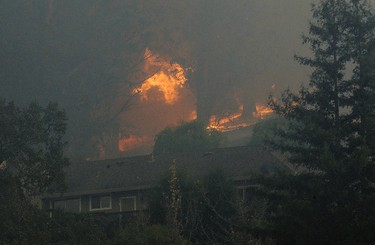 A tree catches fire near houses in the Oakmont are of Santa Rosa, Calif., Tuesday, Oct. 10, 2017. (AP Photo/Jeff Chiu)