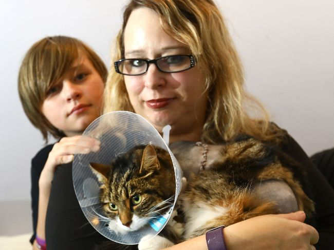 Mom, Shannon Stevenson with her son Dominick Whitney,13, and their long lost cat Lexi who was recently found after she was shot and had to have one of her legs amputated in Calgary on Sunday October 15, 2017. Darren Makowichuk/Postmedia