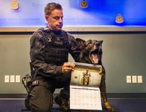 Officer Dan Ames poses with Niko at Vancouver police headquarters in Vancouver on Wednesday, Oct. 18, 2017. (Arlen Redekop/Postmedia Network)