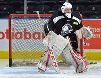 London Knights new goaltender Joseph Raaymakers during practice at Budweiser Gardens. (MORRIS LAMONT, The London Free Press)