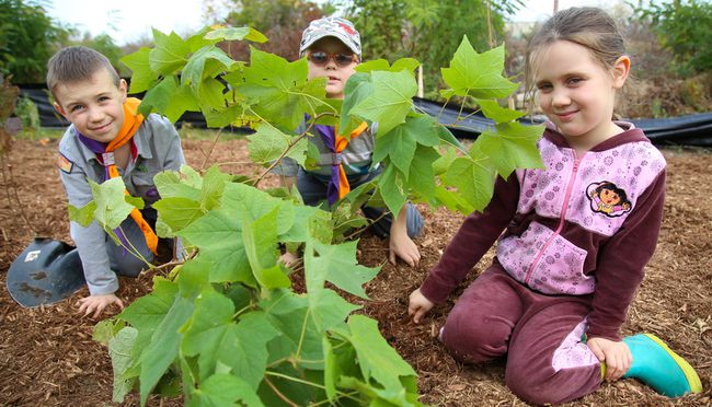 1st Stirling Cub members Tristan Himberg-Larsen (far left) and Michael Beinschroth are joined by Linnea Himberg-Larsen around one of the trees the group helped plant at the Trenton Greenbelt Conservation Area on Saturday October 21, 2017 in Trenton, Ont. Close to 50 volunteers planted 370 trees and shrubs as well as 240 wildflowers throughout the morning. Tim Miller/Belleville Intelligencer/Postmedia Network