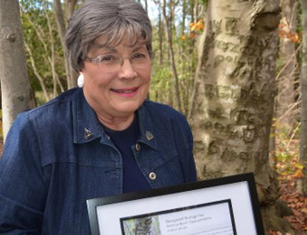 Paula Niall with a certificate from Forests Ontario with a certificate recognizing The Polish Tree near Owen Sound as a heritage tree. (Rob Gowan The Sun Times)