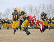 The LP Miller Bears will host the Melville Cobras at 1 pm this Saturday in their first post-season in several years.