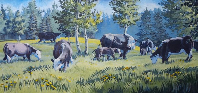 Photo Supplied