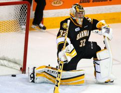 Sarnia Sting's goalie Justin Fazio. (File photo)