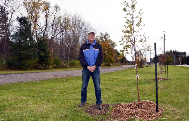 Lloyd Lewis, founder of the local Neighbourwoods North group, stands along the row of trees that were planted recently along Eddie Sargent Parkway at Kelso Beach Park in Owen Sound. DENIS LANGLOIS/THE SUN TIMES