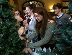 Elliot Ferguson/The Whig-Standard Queen's University student Abby Ross, centre, places a teddy bear on a tree at Kingston General Hospital at the launch of the annual Teddy Bear campaign in Kingston on Monday.