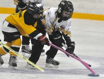 Hallee Vosper (8) of the Mitchell U8 ringette team races for the loose ring with this Dorchester opponent during league action in Mitchell last Saturday, Nov. 18. ANDY BADER/MITCHELL ADVOCATE