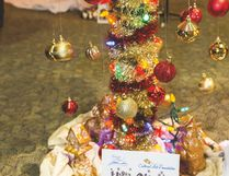 Decorated by community groups and residents, Christmas will come alive through the Festival of Trees this weekend at the community centre. Photo Courtesy Rob Swyrd Photography