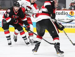 (Charlotte Checkers photo)