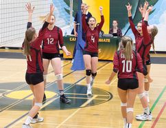 Cochrane Cobras celebrate a point during their gold medal match.