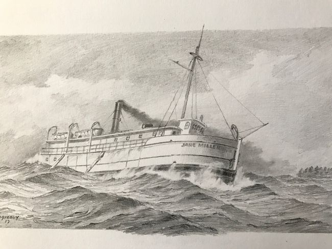 A drawing of the Jane Miller by U.S. artist Bob McGreevy. (Bob McGreevy)