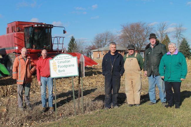 A group of Lambton County farmers donated time and labour Nov. 29 to help fight world hunger, raising money for the Bluewater Growing Project. From left are Robert Halliday, Jack Koetsier, Bill VanderLinde, John Speelman, Harry Joosse and Lammie Joosse.