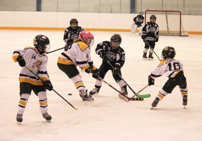 Sarah Meyer (centre) and William Benedict (right) go for the puck in a Hanna Colts novice game against the Strathmore Storm on Saturday, while teammate Kevin Cavenagh keeps an eye on its direction of travel. The Colts won the game 17-1. (Jackie Irwin/ Hanna Herald/ Postmedia Network)