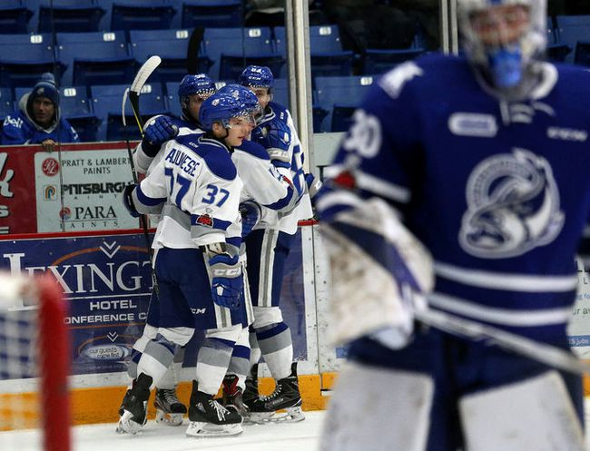The Sudbury Wolves celebrate a goal against the Mississauga Steelheads during OHL action at the Sudbury Community Arena in Sudbury, Ont. on Friday December 1, 2017. John Lappa/Sudbury Star/Postmedia Network