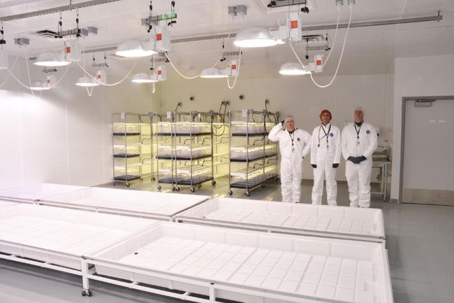 With its production facility in Stratford nearly ready, GreenSeal Cannabis Company, Ltd. will likely begin cultivation of medicinal marijuana as early as January. Pictured, co-founders Peter Reeves, Corey Hamilton, and Chad Morphy show off the facility's mother cloning room, where large mother plants are grown and clippings are taken from those plants to create genetically identical clones. (Galen Simmons/The Beacon Herald)
