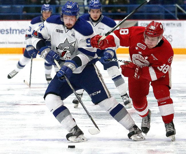 Dmitry Sokolov, left, of the Sudbury Wolves, and Hayden Verbeek, of the Soo Greyhounds, battle for the puck during OHL action at the Sudbury Community Arena in Sudbury, Ont. on Friday November 17, 2017. John Lappa/Sudbury Star/Postmedia Network